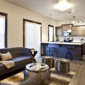 Kitchen and living room in model apartment